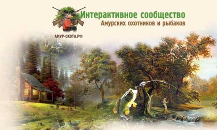 Амурская обл. | Календарь соревнований | 2018г.
