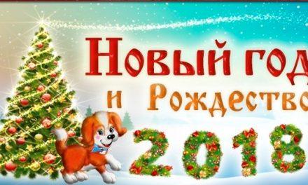 Необычное новогоднее поздравление