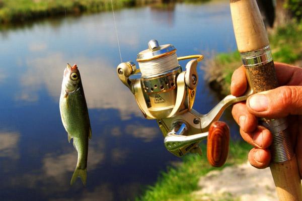Вот это рыбалка…)