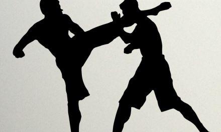 Бокс! Мастерство впечатляет…!