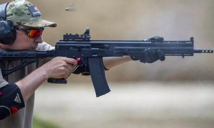 Какое же оружие предпочитают сильнейшие стрелки в классе «Ружьё»?