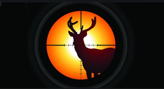 Правила проведения коллективной охоты в Российской Федерации